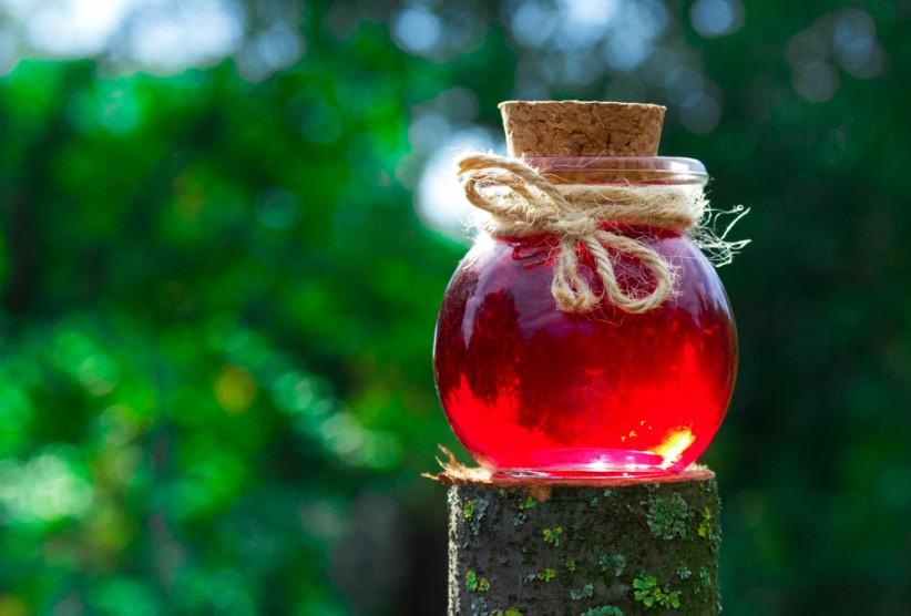Elixir & Phoenix for Your Next Web Application | Project